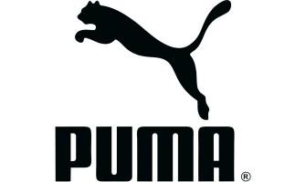 Puma Technology